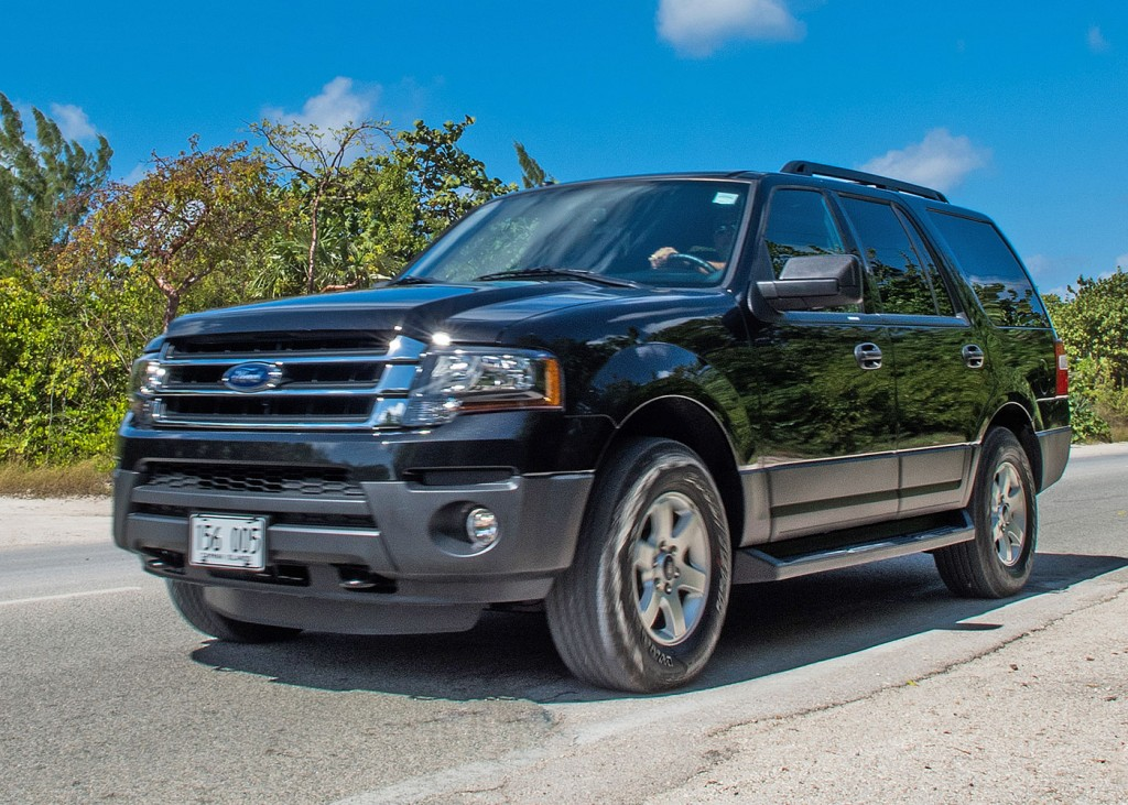 Cruise Net Ford Expedition